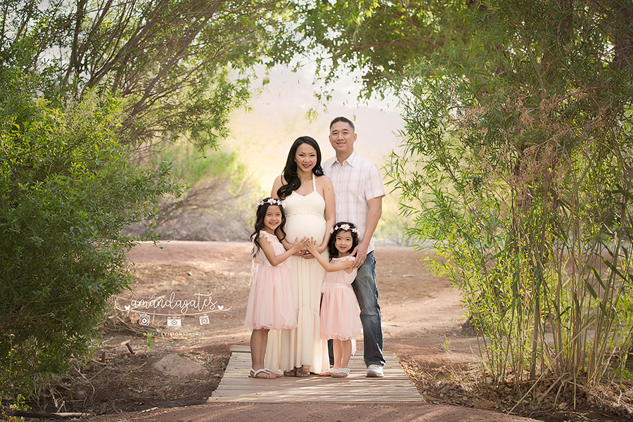 Lam family wetlands las vegas maternity photographer